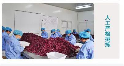 7.31团品出口品质玫瑰花冠茶